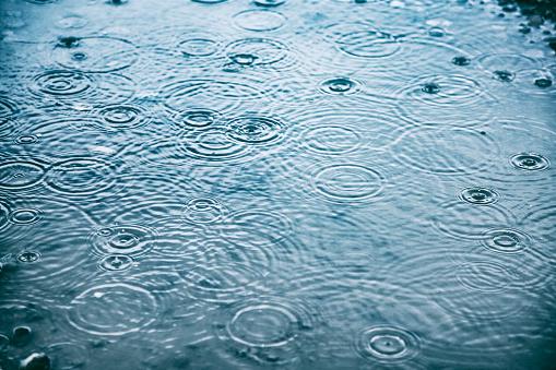 chuva genérico 33343